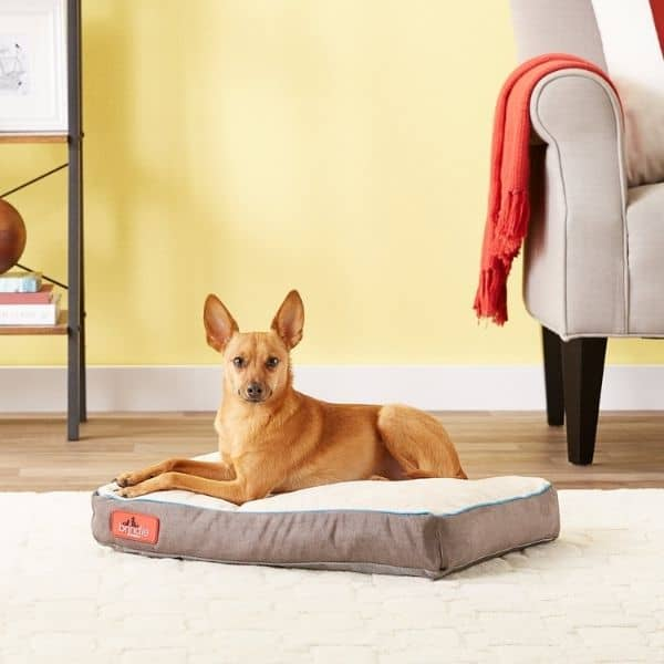 Brindle Waterproof Orthopedic Pillow Cat & Dog Bed wRemovable Cover