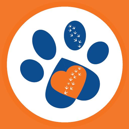 Pets Motherland Icon