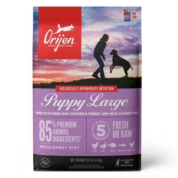 Orijen puppy large food